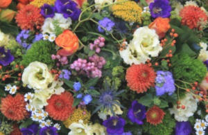 Bloemen Voorpagina